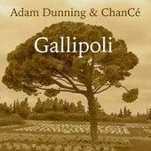 Gallipoli by Adam Dunning