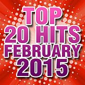 Top 20 Hits February 2015 de Piano Dreamers