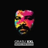 Drumul spre succes de Grasu xxl (Fat Man xxl)