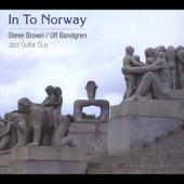 In to Norway de Steve Brown