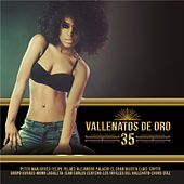 Vallenatos de Oro, Vol. 35 von Various Artists