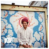 What For? de Toro Y Moi