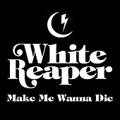 Make Me Wanna Die di White Reaper