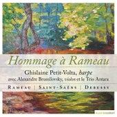 Rameau, Saint-Saëns, Debussy: Hommage à Rameau de Various Artists