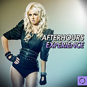 Afterhours Experience by Various Artists