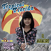 El Aguacero, Vol. 6 by Tropical Florida