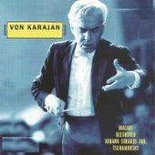 Von Karajan de Wiener Philharmoniker