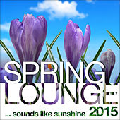 Spring Lounge 2015 (Sounds Like Sunshine) by Various Artists
