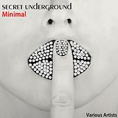 Secret Underground Minimal by Various Artists