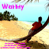 Warmy by Various Artists
