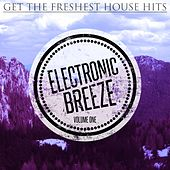 Electronic Breeze, Vol. 1 (Get the Freshest House Hits) by Various Artists