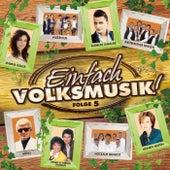 Einfach Volksmusik! Folge 5 von Various Artists