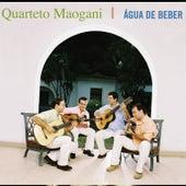Água de Beber by Quarteto Maogani