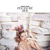 Pleasure Boy by Hannah Cohen