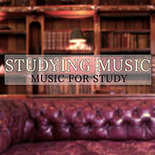 Studying Music - Music for Study von Various Artists