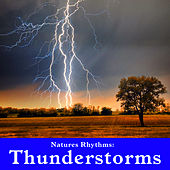 Natures Rhythms: Thunderstorms by Wildlife Bill