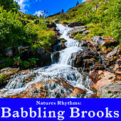 Natures Rhythms: Babbling Brook by Wildlife Bill