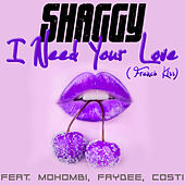Habbi Love (French Kiss) by Shaggy