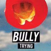 Trying de Bully