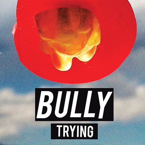 Trying by Bully