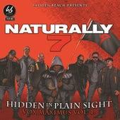 Hidden in Plain Sight de Naturally 7
