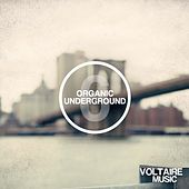 Organic Underground Issue 6 by Various Artists