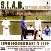 S.L.A.B. Vol. 1 von Various Artists