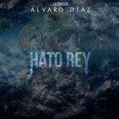 Hato Rey by Alvaro Diaz