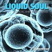 Hypnotic Energy (Sub6 & Freedom Fighters Remix) de Liquid Soul