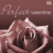 Perfect Valentine by Various Artists
