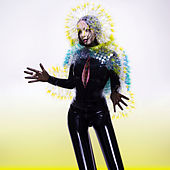 Vulnicura von Björk