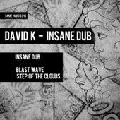 Insane Dub by David K.