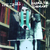 Ignore The Ignorant de The Cribs