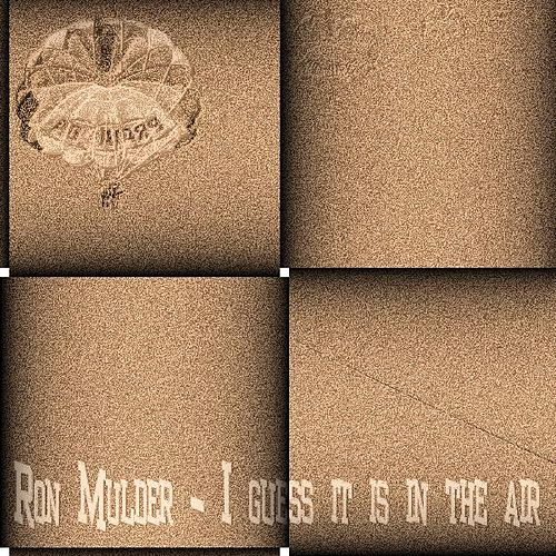 I Guess It Is in the Air by Ron Mulder
