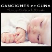 Canciones de Cuna Relajantes y para Bebes en el Vientre Materno - Musica con Sonidos de la Naturaleza de Canciones De Cuna