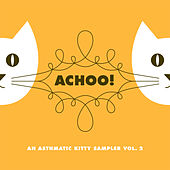 Achoo! An Asthmatic Kitty Sampler, Vol. 2 by Various Artists