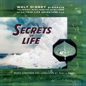 Walt Disney Presents The Original Music from His True Life Adventure Film