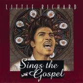 Little Richard Sings The Gospel by Little Richard