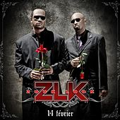 14 février by Zouklook