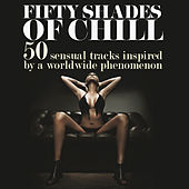 Fifty Shades of Chill (50 Sensual Tracks Inspired by a Worldwide Phenomenon) von Various Artists