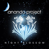 Night Blossom by Ananda Project