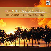 Spring Break 2015 Relaxing Lounge Music by Various Artists