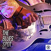 The Blues Spot, Vol. 5 by Various Artists