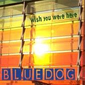 Wish You Were Here de Blue Dog