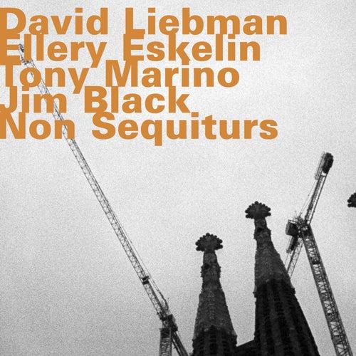 Non Sequiturs by Ellery Eskelin