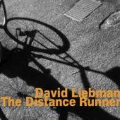 The Distance Runner de David Liebman
