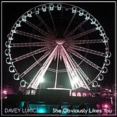 She Obviously Likes You by Davey Lukic