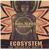 Ecosystem: The Brazilian Joint de DJ Soul Slinger