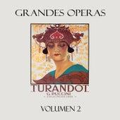 Puccini: Turandot, Vol. 2 de Various Artists
