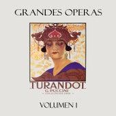 Puccini: Turandot, Vol. 1 de Various Artists